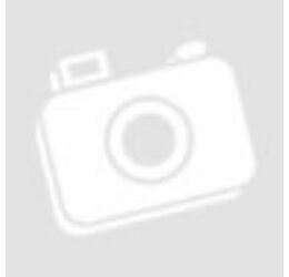 Aniversarea capitalei, 1 leu, România, 2009
