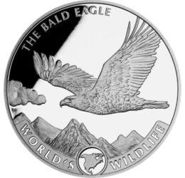 20 franci, Vultur cu cap alb, America de Nord, argint de 999,9/1000, 31,1 g, Congo, 2021