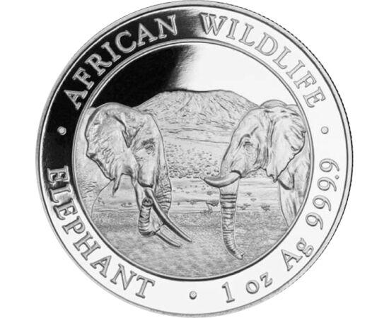 // 100 şilingi, argint de 999,9/1000, Somalia, 2020 // - Somalia emite monedă din argint pur în cinstea unui adevărat gigant al regnului animal, elefantul. Pe una dintre cele mai frumoase şi căutate monede de investiţie apar faţă în faţă un mascul şi o fe