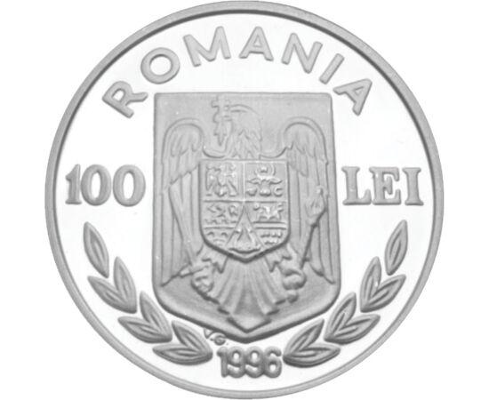 Surfing pe argint, 100 lei, argint, România, 1996