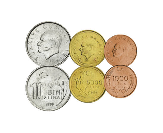 Părintele turcilor, 1000, 5000, 10000, 25000, 50000 lire, Turcia, 1994-2000
